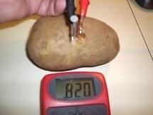Hare Potato battery