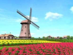 Hare windmills