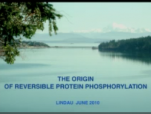7 Protein Cross Talk in Cell Signaling - Lindau-Noble - Edmond Fischer - Medicine 2011