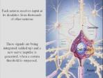 8 Signals and Signalling Mechanisms in the Central Nervous System - Lindau-Nobel - Erwin Neher - Medicine 2011