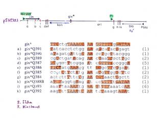 Biological Evolution - Lindau-Nobel - Werner Arber - Medicine 2014