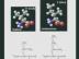 Glimpses of Chemical Wizardry Lindau-Nobel Dudley Herschbach 2012