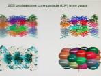 Molecular - L-N - Huber - Chem 2009
